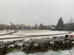雪.jpeg